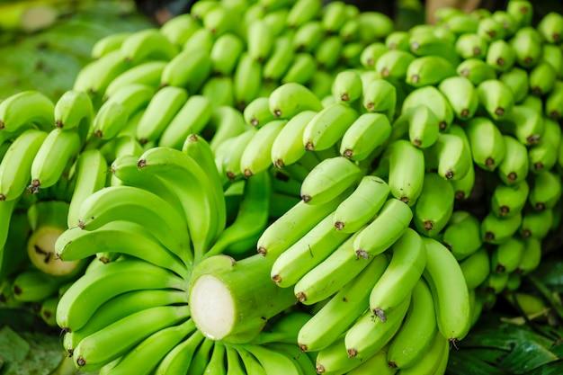 Cacho de banana verde Foto Premium