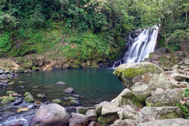 Cachoeira cascada de texolo em xico, méxico Foto gratuita