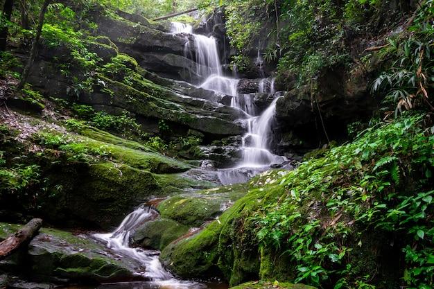 Cachoeira entre natureza verde musgo e rock Foto Premium