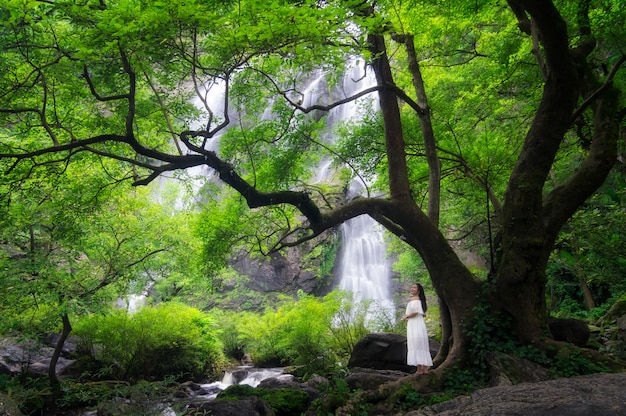 Cachoeira khlong lan. Foto Premium