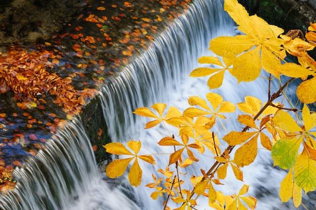 Cachoeira no outono Foto Premium