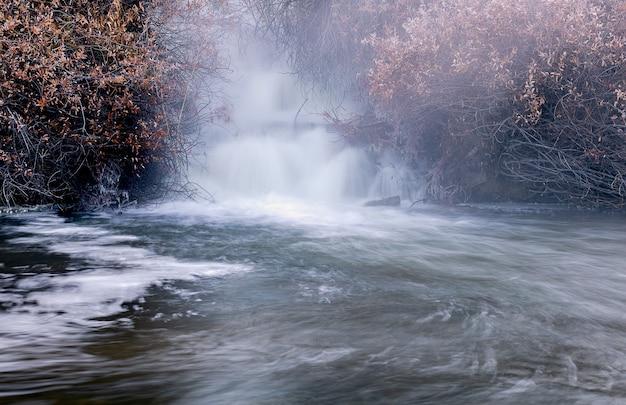 Cachoeira poderosa cercada por plantas secas Foto gratuita