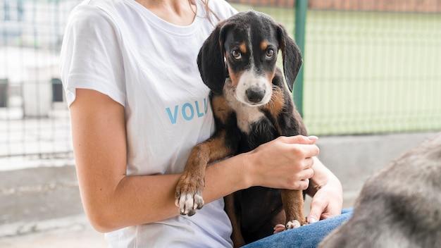 Cachorro de resgate fofo, mas triste esperando para ser adotado por alguém Foto gratuita