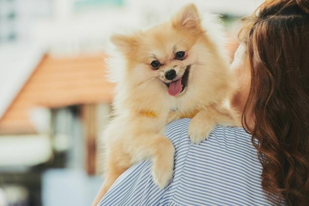 Cachorro fofinho Foto gratuita