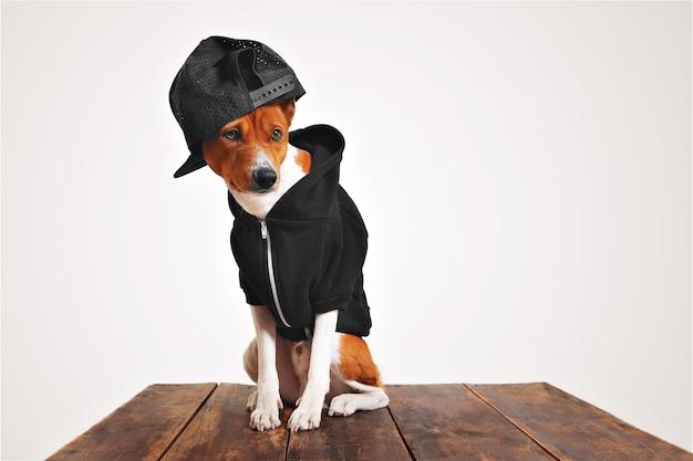 Cachorro marrom e branco estilizado com capuz preto e boné de caminhoneiro com malha nas costas em uma mesa de madeira rústica Foto gratuita