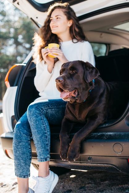 Cachorro preto grande no carro Foto gratuita