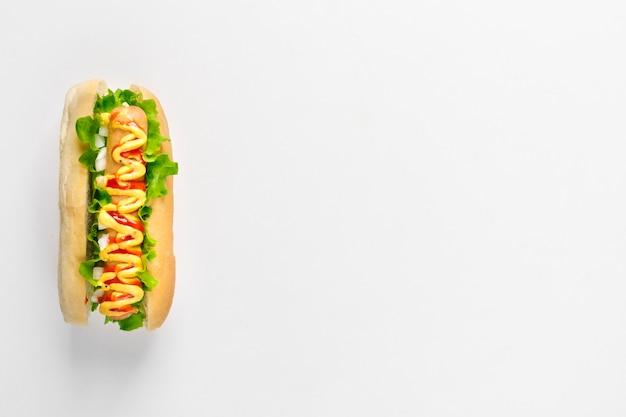 Cachorro-quente plano com copyspace Foto gratuita