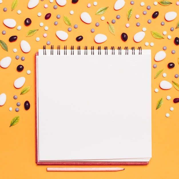 Caderno de quadro rodeado de drageias e folhas Foto gratuita