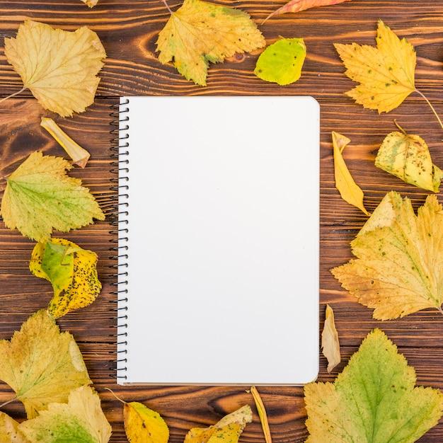 Caderno de vista superior rodeado por folhas de outono Foto gratuita