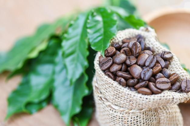 Café torrado no saco com folha verde no fundo da mesa de madeira da manhã Foto Premium
