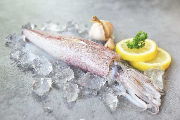 Calamar cru no gelo com alho de limão de especiarias de salada na chapa branca. polvo de lulas frescas ou choco para alimentos cozidos no mercado de restaurantes ou frutos do mar Foto Premium