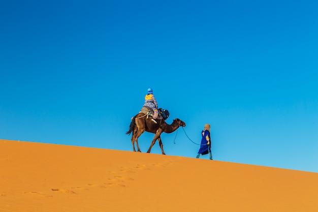 Cameleiro com um camelo ao amanhecer no deserto do saara. Foto Premium