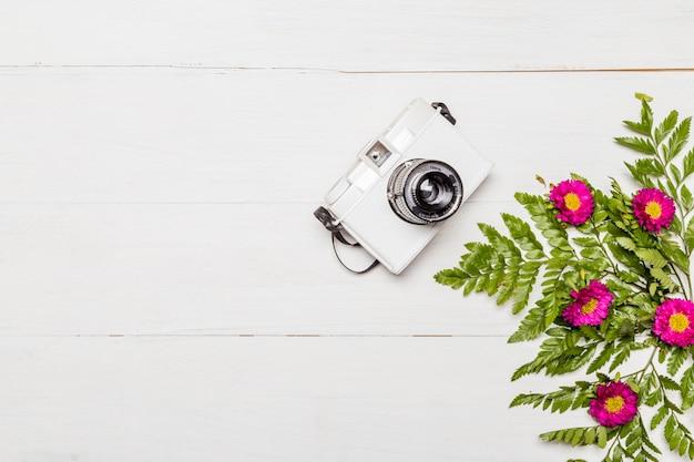 Câmera e flores cor de rosa com folhas verdes Foto gratuita