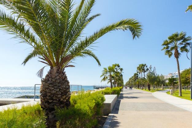 Caminhada caminho aterro ao longo do lado do mar Foto Premium