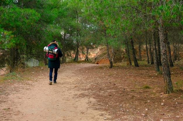 Caminhada e aventura na montanha. Foto Premium