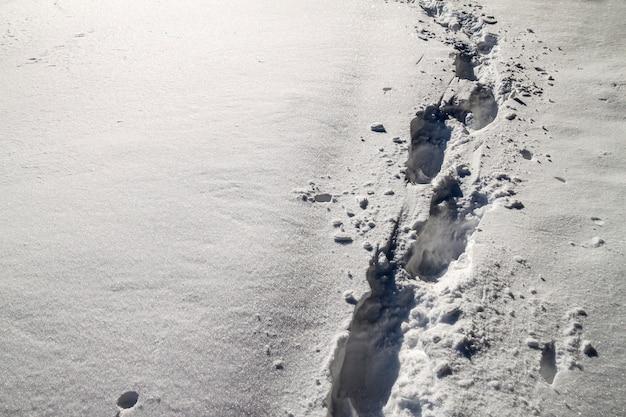 Caminho com pegadas na neve no inverno Foto Premium