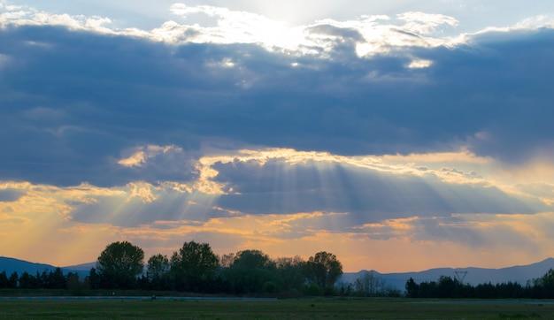 Campo coberto de vegetação sob um céu nublado durante um belo pôr do sol ao anoitecer Foto gratuita