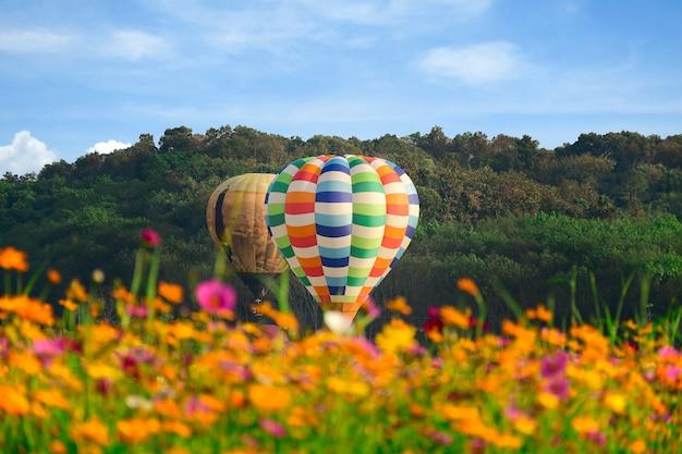 Campo de balão e cosmos de ar quente sobre o céu brilhante. Foto Premium