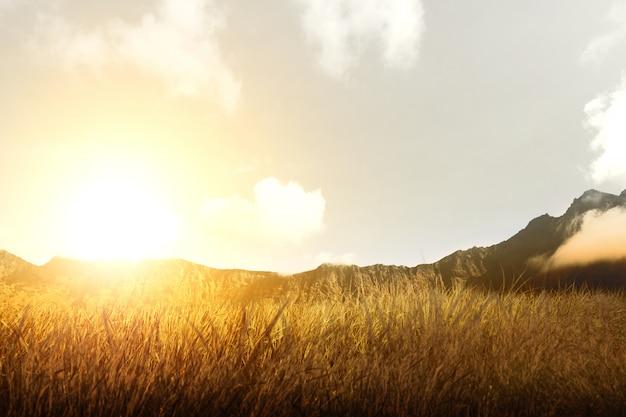 Campo de grama seca com montanha e luz solar Foto Premium