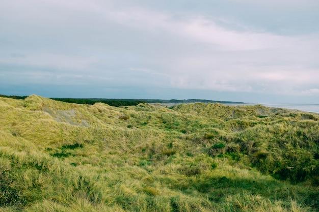 Campo de grama verde perto do mar sob o lindo céu nublado Foto gratuita