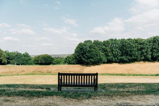 Campo, de, outono, prado, em, um, parque Foto gratuita