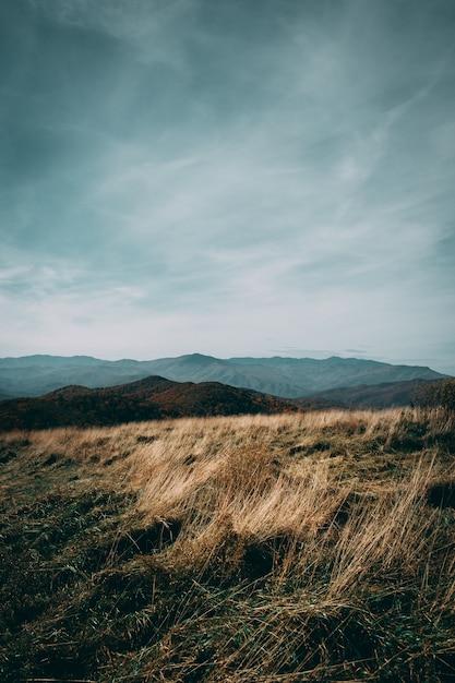 Campo em um dia nublado Foto gratuita