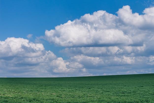 Campo gramado verde bonito sob formações de nuvens fofas Foto gratuita