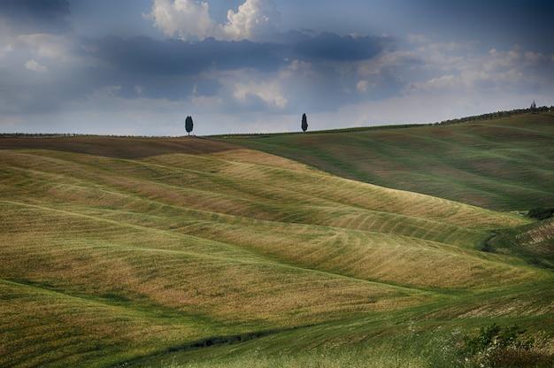 Campos cobertos de grama bonita sob as nuvens no céu Foto gratuita