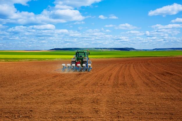 Campos de cereais pelo caminho de santiago em castilla Foto Premium