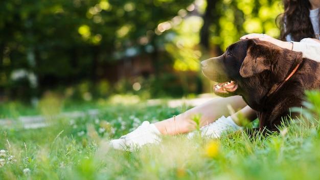Cão sentado perto da perna da mulher no parque Foto gratuita