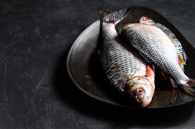 Carpa crucian crua em uma placa preta. peixe orgânico do rio. vista do topo Foto Premium