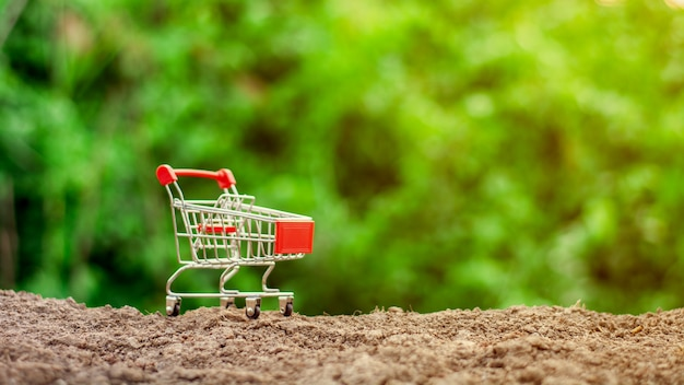 Carrinho de compras vazio pequeno na terra. Foto Premium