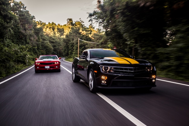 Carros esporte vermelhos e pretos, correndo na estrada. Foto gratuita