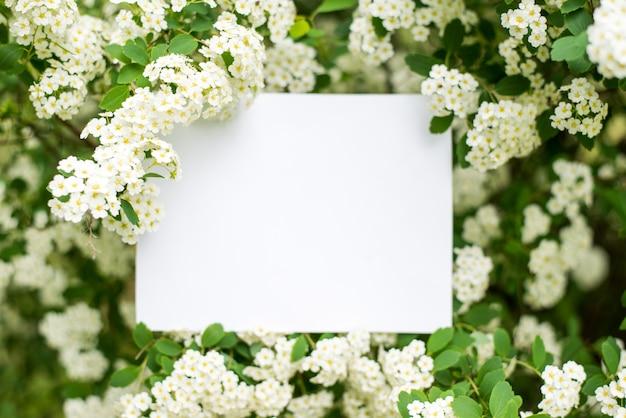 Cartão de papel em flores brancas Foto Premium