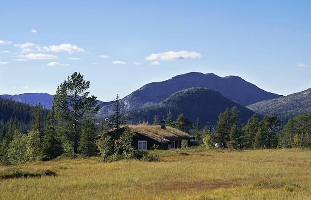 Casa de campo rural norueguesa típica com paisagem deslumbrante e bela vegetação na noruega Foto gratuita