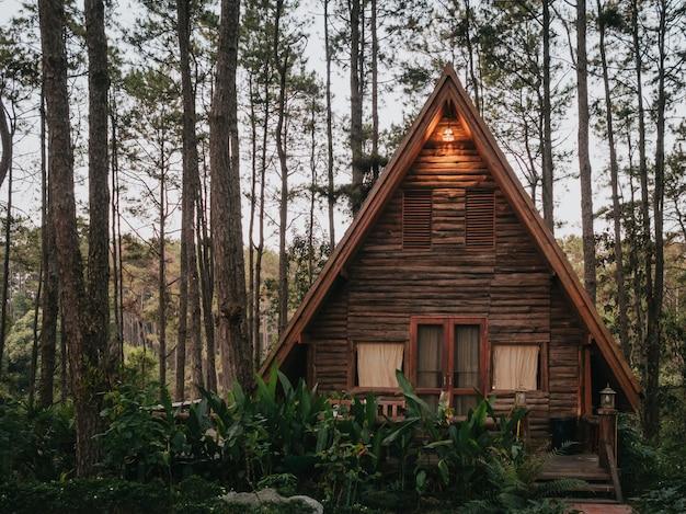 Casa de férias na floresta de pinheiros Foto Premium