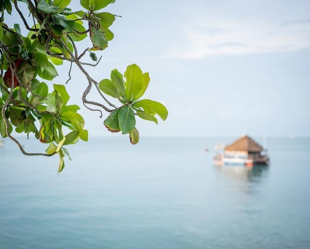 Casa de madeira na água Foto Premium