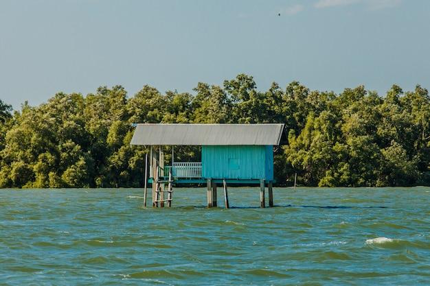 Casa pequena do pescador e floresta dos manguezais Foto Premium