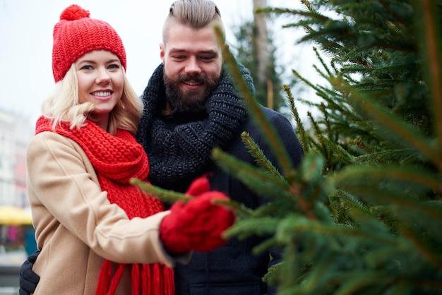 Casal comprando árvore de natal fresca Foto gratuita