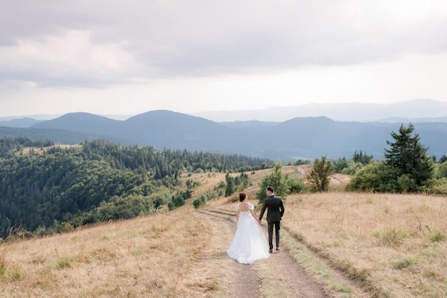 Casal de noivos nas montanhas na estrada, vista traseira de um casal de noivos está andando nas montanhas Foto gratuita