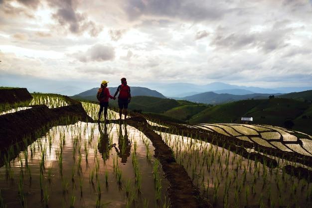 Casal em arroz de campo Foto Premium