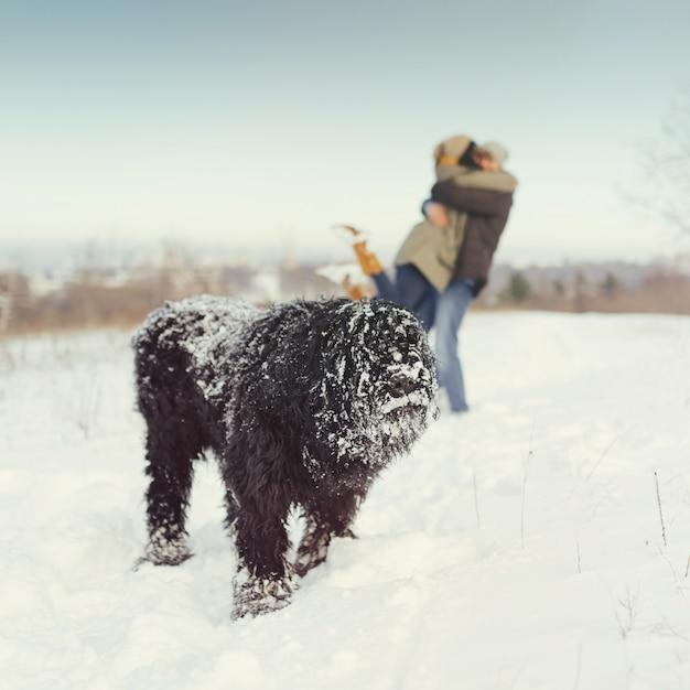 Casal jovem andando com um cachorro em um dia de inverno Foto gratuita