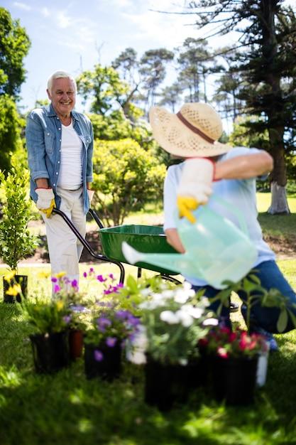 Casal sênior trabalhando juntos no parque Foto Premium