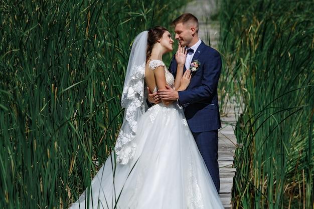Casal sorridente de casamento andando na ponte de madeira. noiva e noivo delicadamente abraços e beijos ao ar livre na grama verde alta. Foto Premium