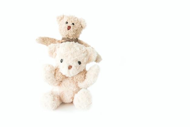 Casal ursinho apaixonado, doce casal boneca no dia dos namorados Foto Premium