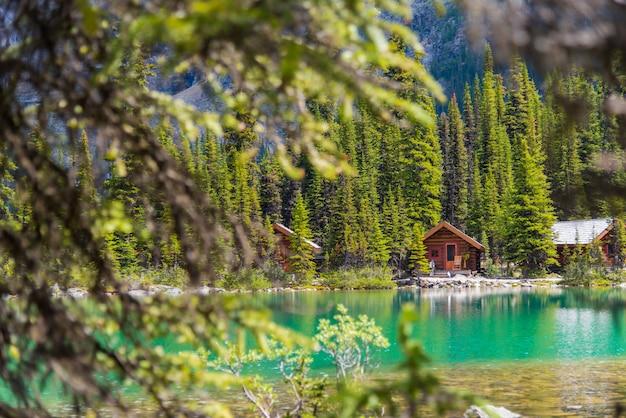 Casas de campo no lago ohara pista de caminhada em dia de sol na primavera, yoho, canadá Foto Premium