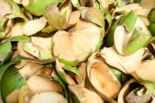 Casca de coco cru Foto Premium
