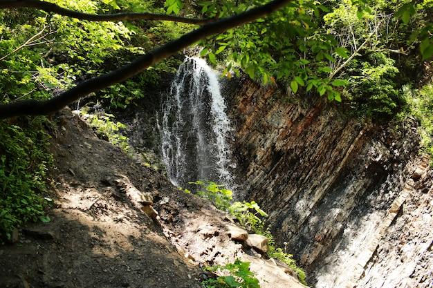 Cascata. cachoeira da montanha no parque Foto Premium