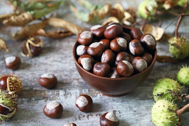 Castanhas. buckeyes. clima de outono. folhas de um castanheiro. Foto Premium