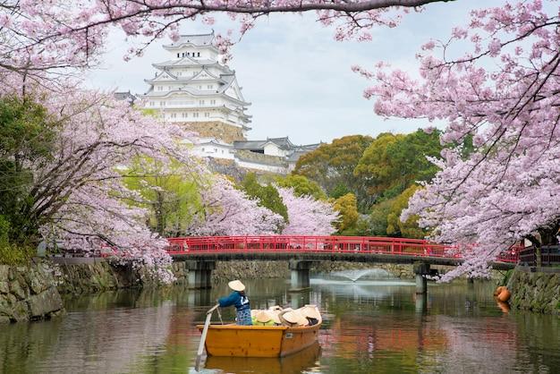 Castelo de himeji com a flor de cerejeira bonita na estação de mola em hyogo perto de osaka, japão. Foto Premium